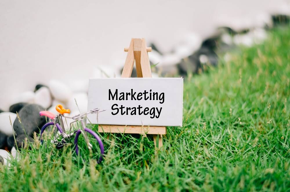 Marketing Strategy Review | Ophidia Marketing